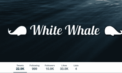 whale-capper-twitter