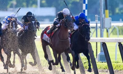 Belmont Stakes 2020 Preview: Odds, Picks and Cheatsheet