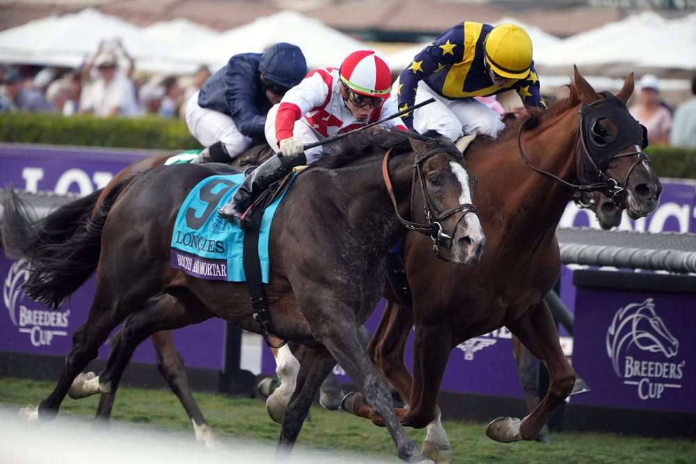 Breeders Cup - Analysis and Picks