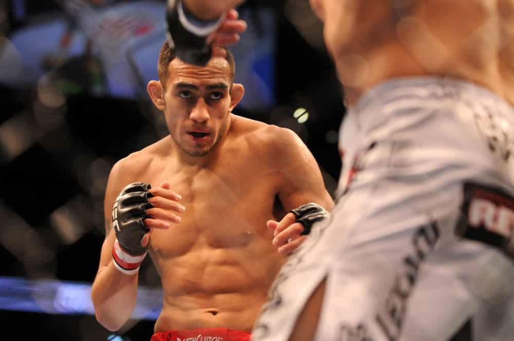 UFC 256 Predictions