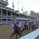 Preakness Stakes - Analysis and Picks