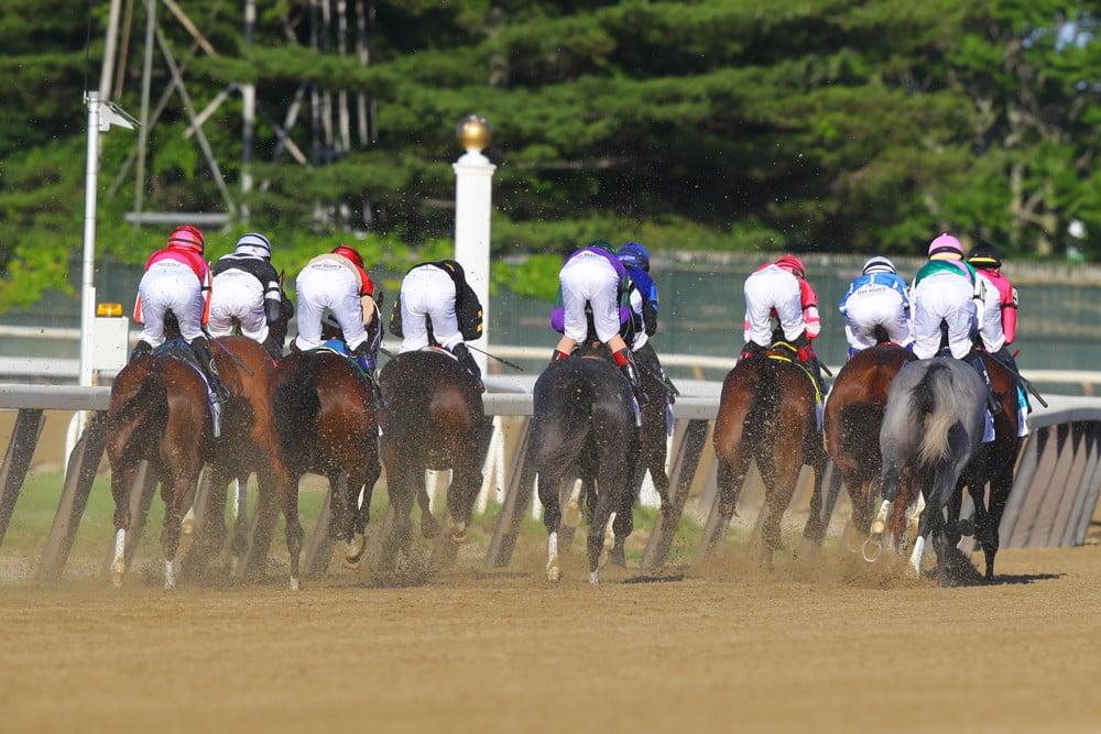 Belmont Stakes 2021 - Analysis and Picks