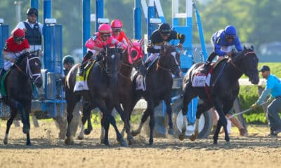 Belmont Derby and Oaks - Analysis and Picks